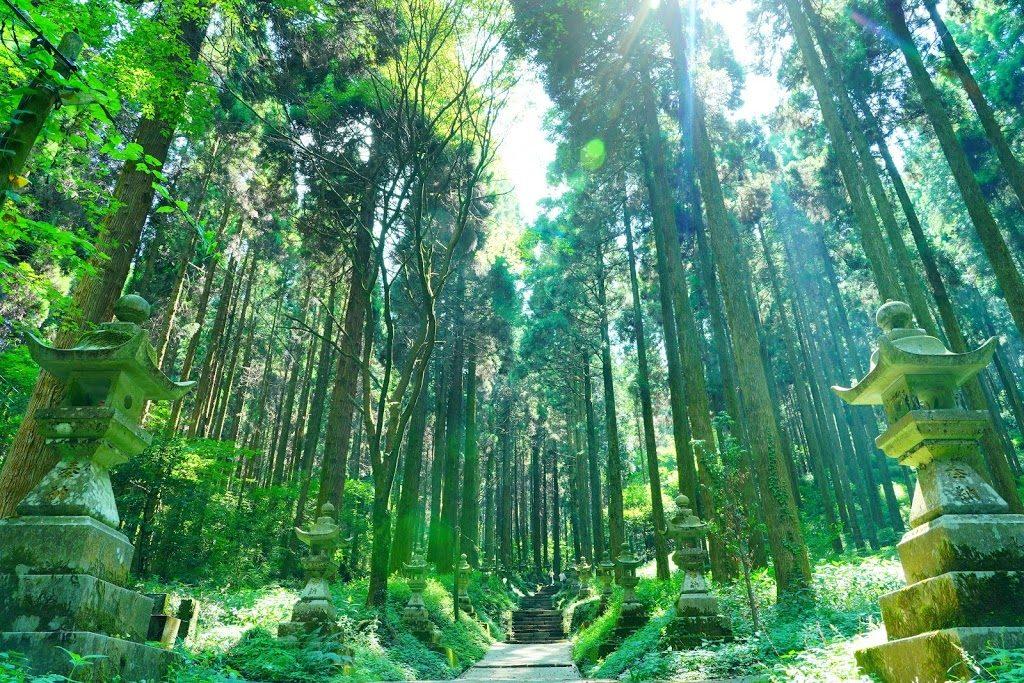 熊本旅行に行ってきた