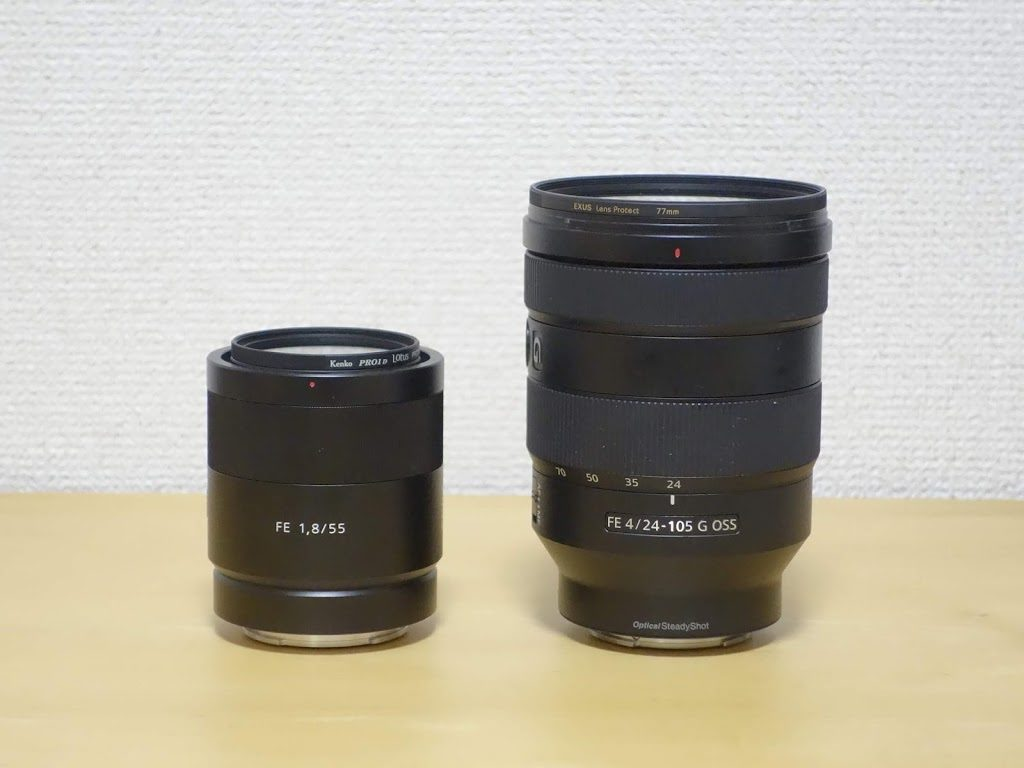 FE 55mm F1.8 ZA or FE 24-105mm F4 G OSS