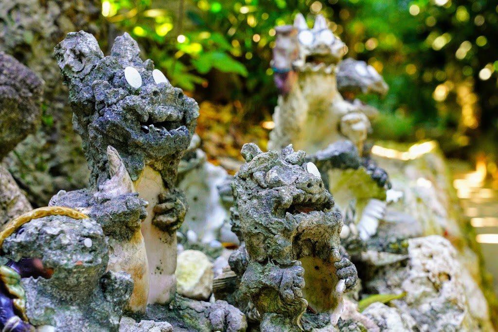 沖縄備瀬のフクギ並木通り